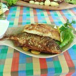 3 verschiedene Fische