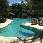 3 foot deep heated pool with no swim up bar