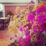 Terrace: open air dining