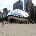 Le haricot de Chicago