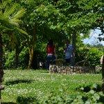 Giardino del B&B Le Rondini