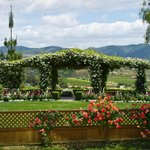 Rose Arbor perfect for weddings & private events