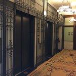 12th floor elevators