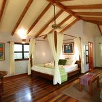 Beautiful tree-house room at Hamanasi Resort