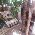 patio vu de la terrasse