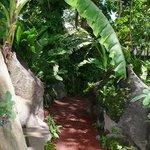 Easy-access trail going around Zopango.