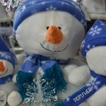 Visit our beautiful gift shop....SnowZone gifts & gear