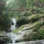 Waterfall in Mount Santubong