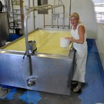 Owner Dawn starting to make a batch of goats' cheese fetta. Yum!