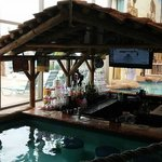 Adult swim up bar