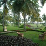 Sea facing garden with a personal hammock!