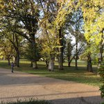 beautiful time , autumn