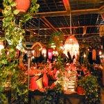 Dinner under colourful lights