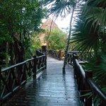Bridge connecting lobby to villa grounds