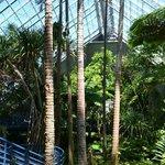 Tropical Plants Enclosure