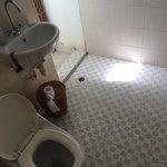 Toilet in bathroom/shower