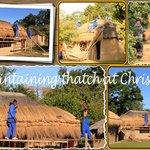 Maintaining the thatch on the mud huts