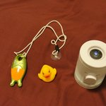 Rubber Duck, water height alarm and Star Projector.