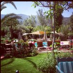 Poolside with Atlas Mountains