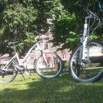 bikes for sunny day!