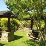 Ellerby Garden