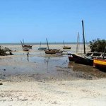 Low tide Beach area