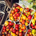 Organic tomatoes in the farmshop