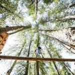 Adventurepark Enzwaldile
