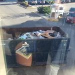 Dumpster View So close you can see things crawling inside