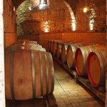 de wijnkelder.