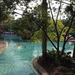 JW Pool