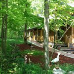 A Cabin in the Woods lives up to its name!