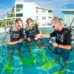 Learn to Scuba Dive in Paradise