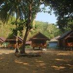 Les nouveaux bungalows en bois
