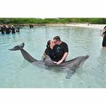 DolphinCay @ Atlantis (walking distance f/ Riu)