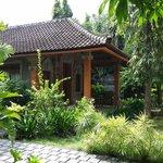 Beatiful Garden