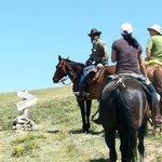 Ride above treeline with Rio Grande Stables out of the Taos Ski Valley.