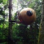 Eryn sphere