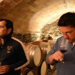 Fredi's cellar for Sal del Coster