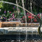Fountain at the Rose Garden