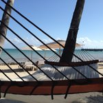 Love the hammocks on the beach