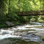 Fires Creek