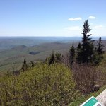 summit view from Mt Greylock, May 2014
