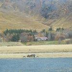 Scenery on horseback ride