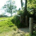 Penarwyn House Foto
