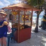 coconut stand nearby