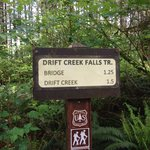 Drift Creek Trailhead sign.