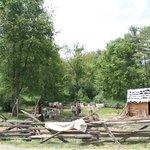 Early homestead