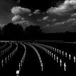 American Cemetery - Cambridge