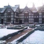 Snowy January